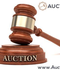 ad-auctionubid.com
